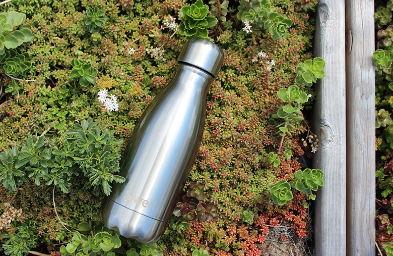 Concert venues and other summer spots in NYC with small insulated stainless steel Swell bottles